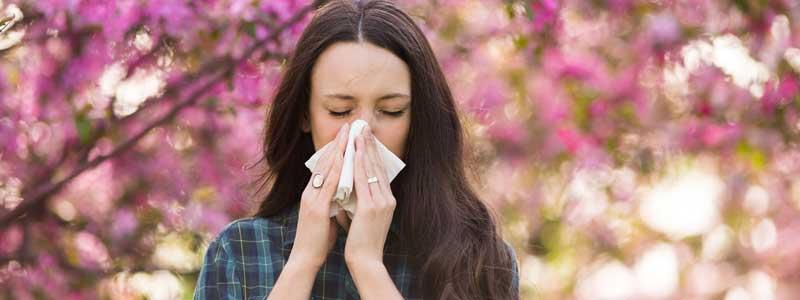 Alergia estacional: consejos para aliviar los síntomas